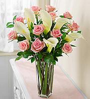 Pink Calla-Roses
