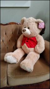 XX-Large Teddy
