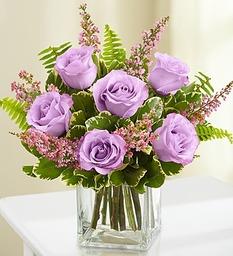Embrace Lavender