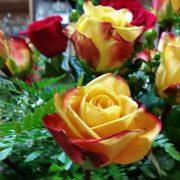 Yellow Confetti Roses